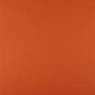 kleur GINGERSNAP