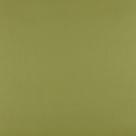 kleur WASABI